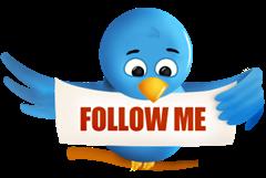 follow-me-twitter-bird